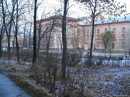 Зима в центральной России