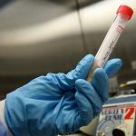 опасный штамм вируса птичьего гриппа