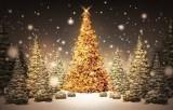 Новый год и Рождество. Графика: vmonitor.ru