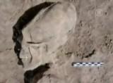 Длинные черепа нашли в Мексике. Кадр NTDTV