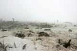 Место авиакатастрофы в Казахстане. Фото РИА Новости