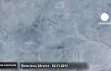 Нашествие медуз в Балаклаве. Кадр Euronews