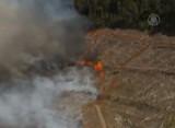 Лесные пожары на Тасмании. Кадр NTDTV