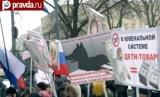 Марш в поддержку детей в Москве 2 марта 2013. Кадр Правда.ру