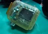 Потерянная на Гавайях камера нашлась на Тайване. Кадр NTDTV