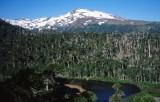 Вулкан Копауэ в Чили. Фото: Mono Andes / Flickr