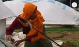 В Бангладеш и Мьянме свирепствует циклон. Кадр Euronews