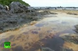 Разлив нефти на тайском курорте. Кадр RT