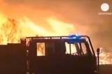 Горит португальский лес. Кадр Euronews
