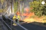 Лесной пожар в Галисии, Испания. Кадр Euronews