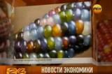 Разноцветная кукуруза. Кадр РЕН-ТВ