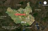 Южный Судан. Карта Euronews / DigitalGlobe