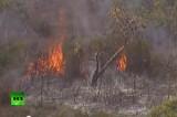 Пожар в Австралии на острове Северный Страдброк. Кадр RT