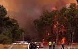 Лесной пожар в западной Австралии. Кадр NTDTV