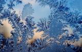 Морозный узор. Фото: diary.ru