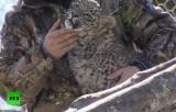 Детёныш переднеазиатского леопарда в руках зоолога. Кадр RT