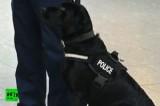 Собака-полицейский. Кадр RT
