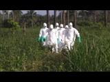 Либерия: из карантинного центра сбежали больные лихорадкой Эбола