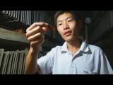 Китаец открыл тараканью ферму(новости)