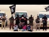 Крупнейшая исламисткая группировка египта присоединяется к ИГИЛ
