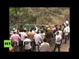 В Индии поймали леопарда, гулявшего по улицам города