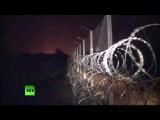 Нелегальные мигранты бесконтрольно пересекают сербско-венгерскую границу