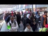 Доклад: К концу 2015 года число беженцев в Германии может достигнуть 1,5 миллионов