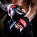 UFC-PRO